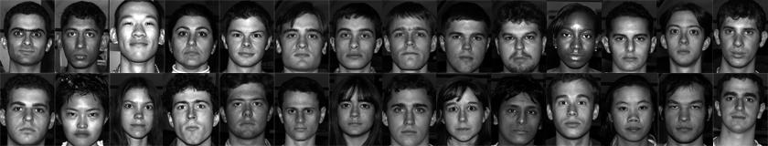 yüz tanıma yüz veritabanı
